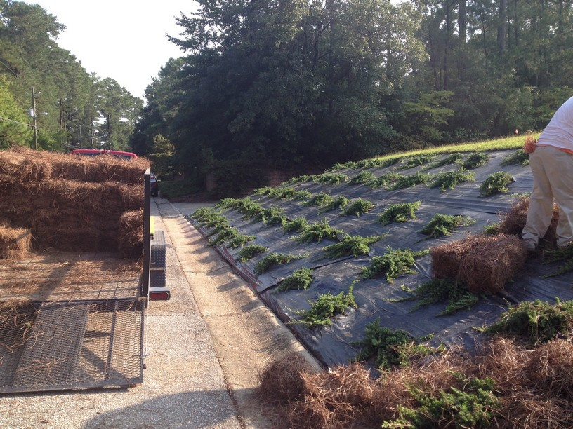 Landscape redesigned and installed in fayetteville nc for Landscape installation