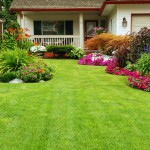 Landscaping Services, Lawn Maintenance