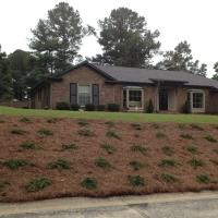 Fayetteville Landscape Redesign