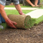 Landscaping Services, Sod Installation