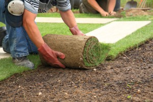 Eastover Landscaping Company, Landscaping Services, Sod Installation
